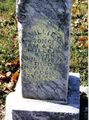 MILLER, WILLIE O. - Preble County, Ohio | WILLIE O. MILLER - Ohio Gravestone Photos