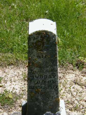 MURRAY, SADIE C. - Preble County, Ohio | SADIE C. MURRAY - Ohio Gravestone Photos