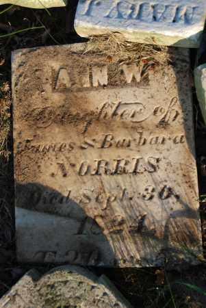NORRIS, ANN W. - Preble County, Ohio | ANN W. NORRIS - Ohio Gravestone Photos