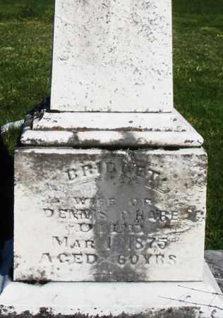 O'HARE, BRIDGET - Preble County, Ohio | BRIDGET O'HARE - Ohio Gravestone Photos