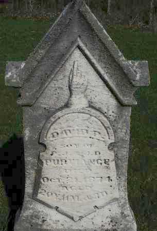 PURVIANCE, DAVID P. - Preble County, Ohio | DAVID P. PURVIANCE - Ohio Gravestone Photos
