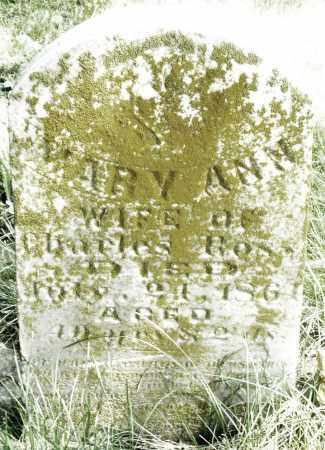 ROSS, MARY ANN - Preble County, Ohio   MARY ANN ROSS - Ohio Gravestone Photos