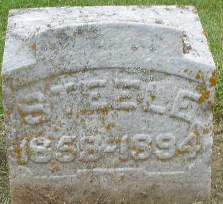 STEELE, ROBERT - Preble County, Ohio | ROBERT STEELE - Ohio Gravestone Photos