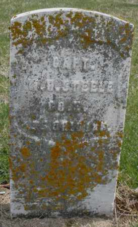 STEELE, W. CAPT. - Preble County, Ohio | W. CAPT. STEELE - Ohio Gravestone Photos