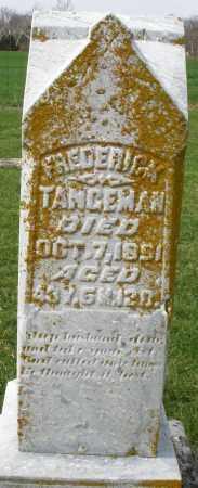 TANGEMAN, FREDERICK - Preble County, Ohio | FREDERICK TANGEMAN - Ohio Gravestone Photos