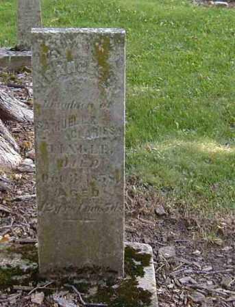TINGLE, FRANCES - Preble County, Ohio | FRANCES TINGLE - Ohio Gravestone Photos