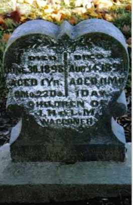 WAGGONER, ALVA MEDFORD - Preble County, Ohio | ALVA MEDFORD WAGGONER - Ohio Gravestone Photos