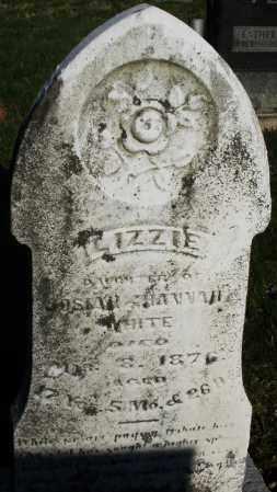 WHITE, LIZZIE - Preble County, Ohio | LIZZIE WHITE - Ohio Gravestone Photos