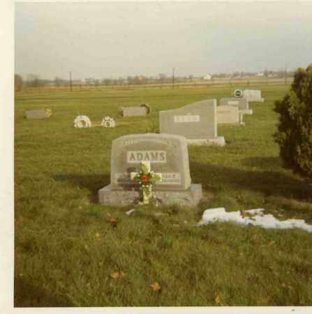 IRWIN ADAMS, ELLA C. - Putnam County, Ohio | ELLA C. IRWIN ADAMS - Ohio Gravestone Photos