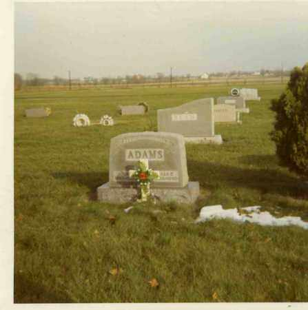 ADAMS, JOHN HENRY - Putnam County, Ohio | JOHN HENRY ADAMS - Ohio Gravestone Photos