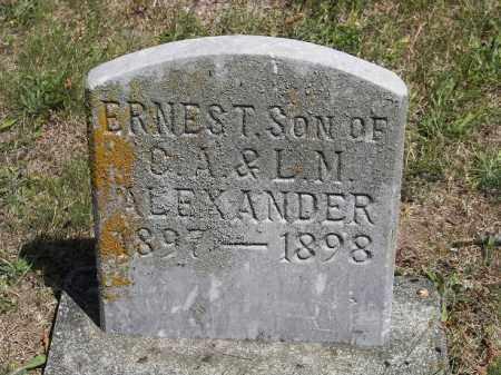 ALEXANDER, ERNEST - Putnam County, Ohio | ERNEST ALEXANDER - Ohio Gravestone Photos