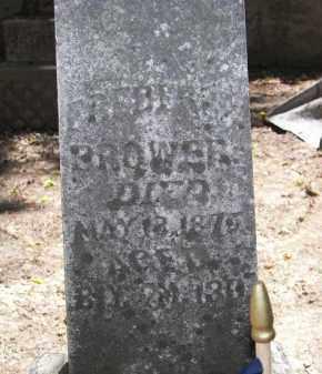 BROWER, FREDERICK - Putnam County, Ohio | FREDERICK BROWER - Ohio Gravestone Photos