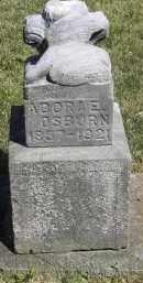 OSBURN, ADORA E - Putnam County, Ohio | ADORA E OSBURN - Ohio Gravestone Photos