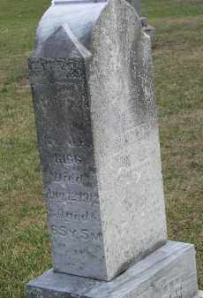 RIGG, MARY A - Putnam County, Ohio | MARY A RIGG - Ohio Gravestone Photos