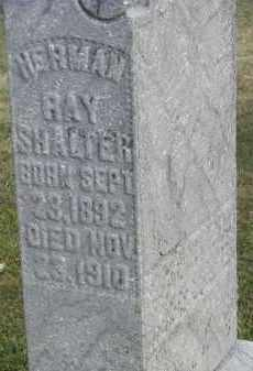 SHALTER, HERMAN - Putnam County, Ohio | HERMAN SHALTER - Ohio Gravestone Photos