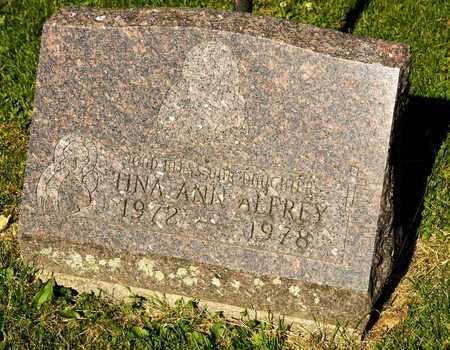 ALFREY, TINA ANN - Richland County, Ohio | TINA ANN ALFREY - Ohio Gravestone Photos