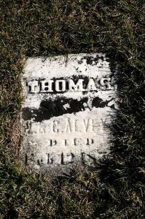 ALVEY, THOMAS - Richland County, Ohio | THOMAS ALVEY - Ohio Gravestone Photos