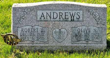 ANDREWS, OLIVE N - Richland County, Ohio | OLIVE N ANDREWS - Ohio Gravestone Photos