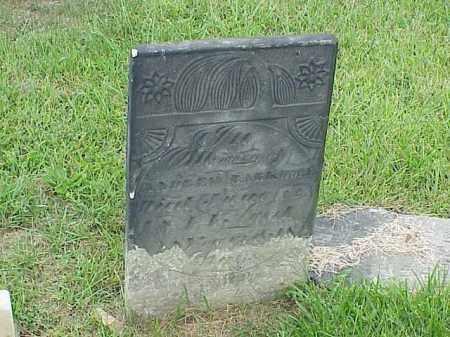 BARKDOLL, ANDREW - Richland County, Ohio   ANDREW BARKDOLL - Ohio Gravestone Photos