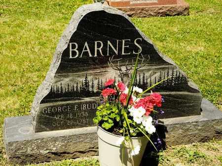 BARNES, GEORGE F - Richland County, Ohio | GEORGE F BARNES - Ohio Gravestone Photos