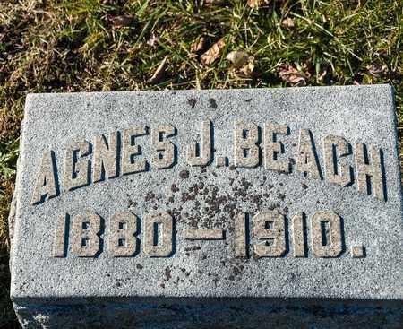BEACH, AGNES J - Richland County, Ohio | AGNES J BEACH - Ohio Gravestone Photos