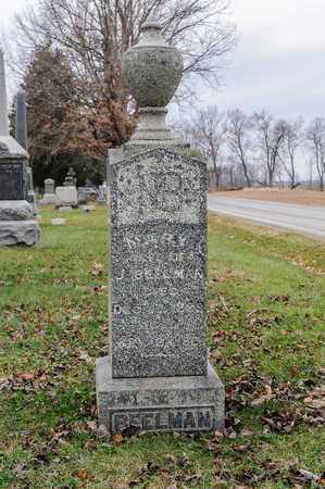 BEELMAN, MARY - Richland County, Ohio | MARY BEELMAN - Ohio Gravestone Photos