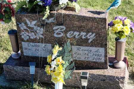 BERRY, RANDY L - Richland County, Ohio   RANDY L BERRY - Ohio Gravestone Photos