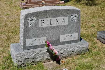 BILKA, JAMES - Richland County, Ohio | JAMES BILKA - Ohio Gravestone Photos