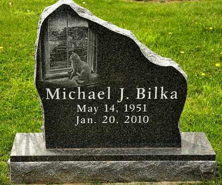 BILKA, MICHAEL J - Richland County, Ohio | MICHAEL J BILKA - Ohio Gravestone Photos