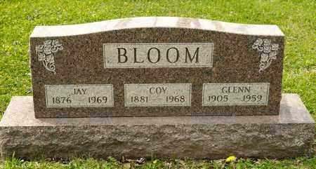 BLOOM, JAY - Richland County, Ohio | JAY BLOOM - Ohio Gravestone Photos