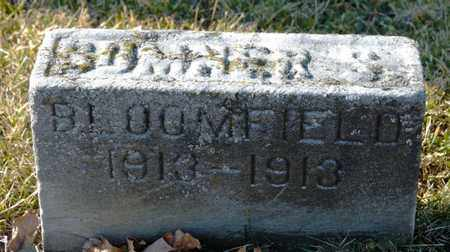 BLOOMFIELD, SOMNER S - Richland County, Ohio | SOMNER S BLOOMFIELD - Ohio Gravestone Photos