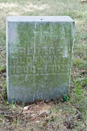 BLOTKAMP, GEORGE - Richland County, Ohio   GEORGE BLOTKAMP - Ohio Gravestone Photos