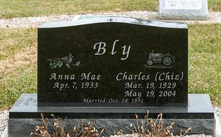 BLY, CHARLES - Richland County, Ohio   CHARLES BLY - Ohio Gravestone Photos