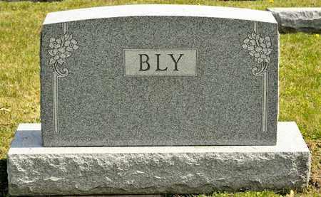 BLY, MARY A - Richland County, Ohio | MARY A BLY - Ohio Gravestone Photos