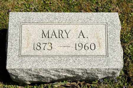 BLY, MARY A - Richland County, Ohio | MARY A BLY - Ohio Gravestone Photos