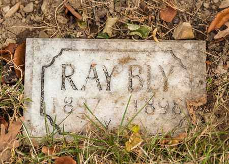 BLY, RAY - Richland County, Ohio | RAY BLY - Ohio Gravestone Photos