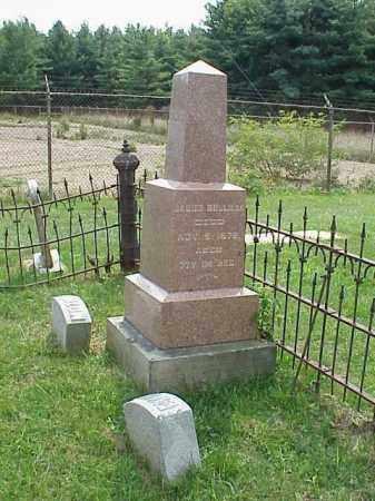 BOLLMAN, KATIE - Richland County, Ohio | KATIE BOLLMAN - Ohio Gravestone Photos