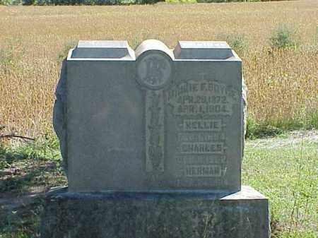 BOYCE, MINNIE F. - Richland County, Ohio   MINNIE F. BOYCE - Ohio Gravestone Photos