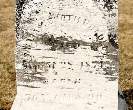 BRADLEY, WILLIAM BOOTH - Richland County, Ohio   WILLIAM BOOTH BRADLEY - Ohio Gravestone Photos