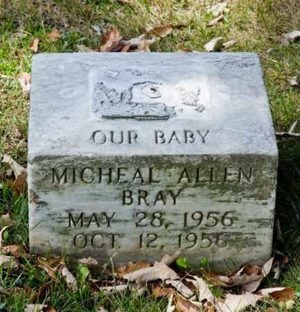 BRAY, MICHEAL ALLEN - Richland County, Ohio | MICHEAL ALLEN BRAY - Ohio Gravestone Photos