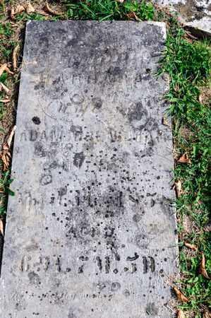 BRENENMAN, BARBARA - Richland County, Ohio   BARBARA BRENENMAN - Ohio Gravestone Photos