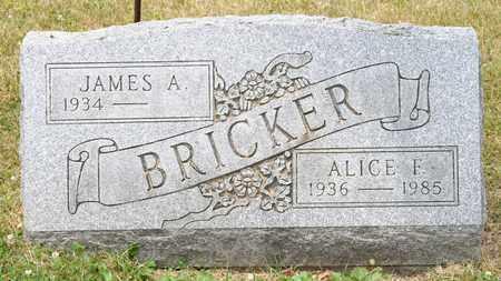 BRICKER, ALICE F - Richland County, Ohio   ALICE F BRICKER - Ohio Gravestone Photos