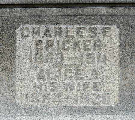 BRICKER, ALICE A - Richland County, Ohio | ALICE A BRICKER - Ohio Gravestone Photos