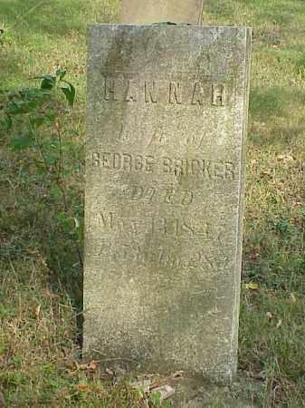 BRICKER, HANNAH - Richland County, Ohio   HANNAH BRICKER - Ohio Gravestone Photos
