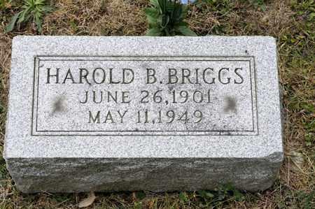 BRIGGS, HAROLD B - Richland County, Ohio | HAROLD B BRIGGS - Ohio Gravestone Photos
