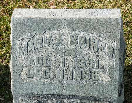 BRINER, MARIA A - Richland County, Ohio | MARIA A BRINER - Ohio Gravestone Photos