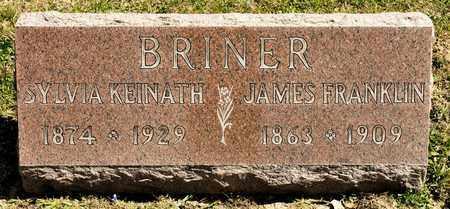 BRINER, SYLVIA - Richland County, Ohio | SYLVIA BRINER - Ohio Gravestone Photos