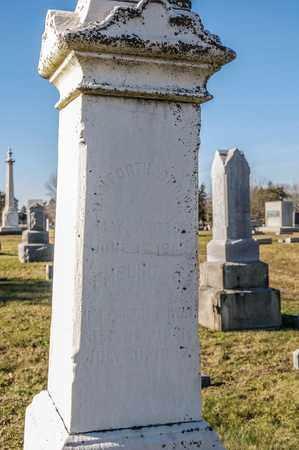 BROWN, EMELINE C - Richland County, Ohio | EMELINE C BROWN - Ohio Gravestone Photos