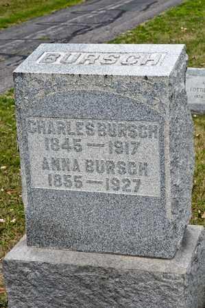 BURSCH, ANNA - Richland County, Ohio | ANNA BURSCH - Ohio Gravestone Photos