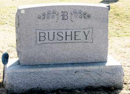 BUSHEY, CHARLES L - Richland County, Ohio | CHARLES L BUSHEY - Ohio Gravestone Photos